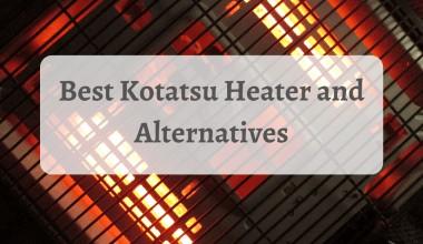 Best Kotatsu Heater and Alternatives